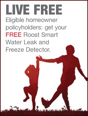 Get a Roost Leak Detector
